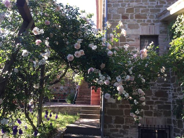 Villa Shireen : Casa Terence - Gubbio - Rumah