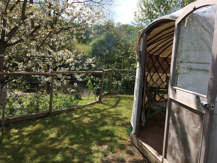 Chestnut Yurt & Oak Tree House.  Yurt, West Sussex