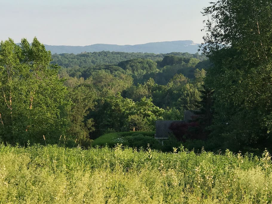 View of Shawangunk Ridge from yard. You can see Mohonk Mountain House in the distance.