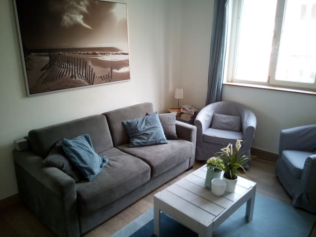 Charmant appartement Lille CHR