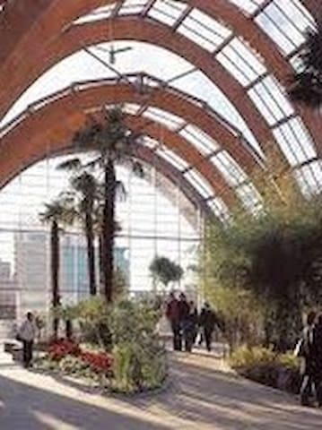 Don't forget to check out Sheffield's Winter Garden, a large glasshouse with plants from around the world