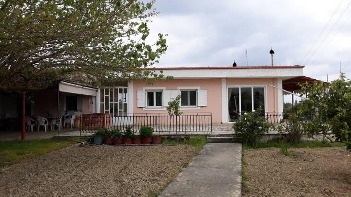 Braxinari House