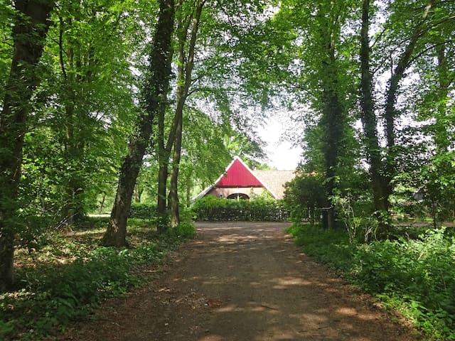Tot rust komen in natuurgebied Bekendelle - Winterswijk Woold - Casa