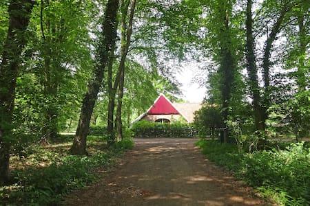 Tot rust komen in natuurgebied Bekendelle - Winterswijk Woold