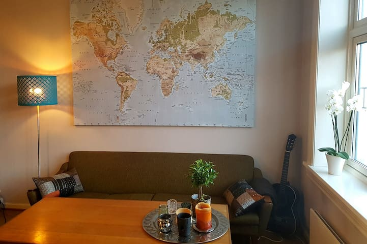 Large room in retro style apartment in Sagene - Oslo