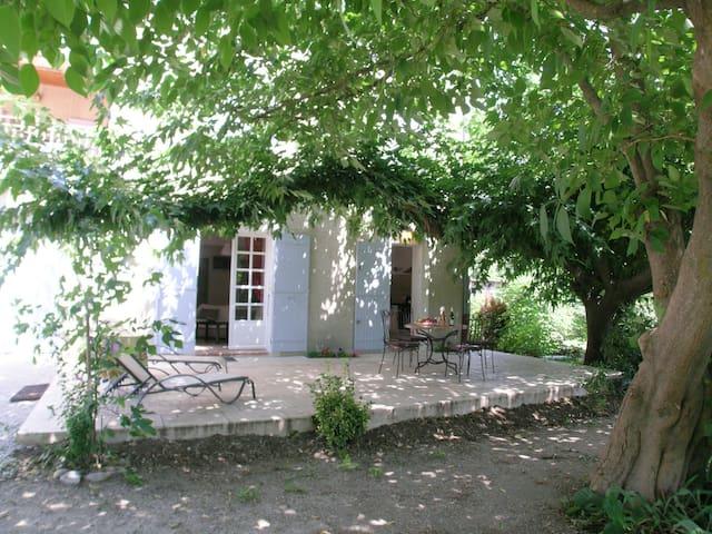 """Maison  des  """" Olivier""""  à  Montfavet   // Avignon"""
