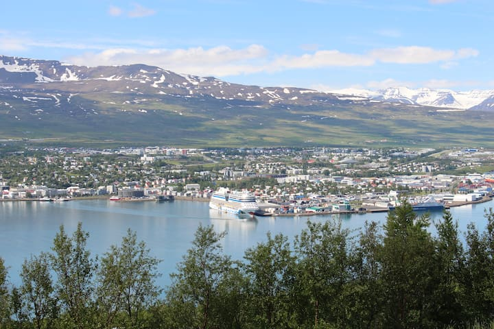 Great three bedroom apartment with amazing view - Akureyri - Byt