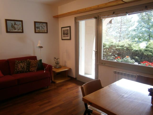 Appartamento Daino in residence prestigioso 4posti - Valdidentro - Appartement