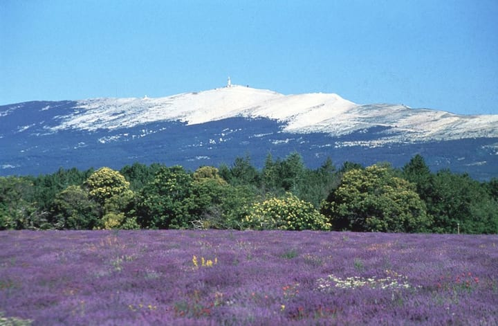 A stopover in Provence