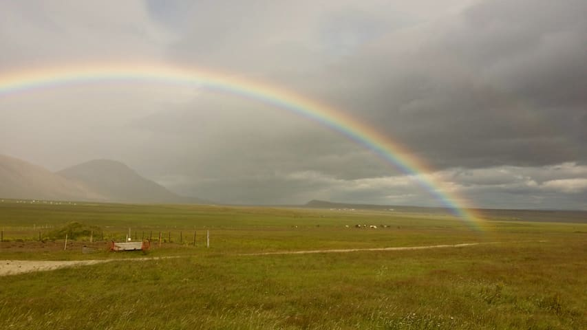 View with a rainbow on our farm.