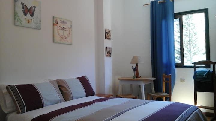 Room in Vallehermoso
