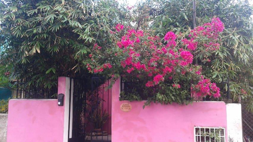 Adorable and friendly Casa Rosada - Mérida - House