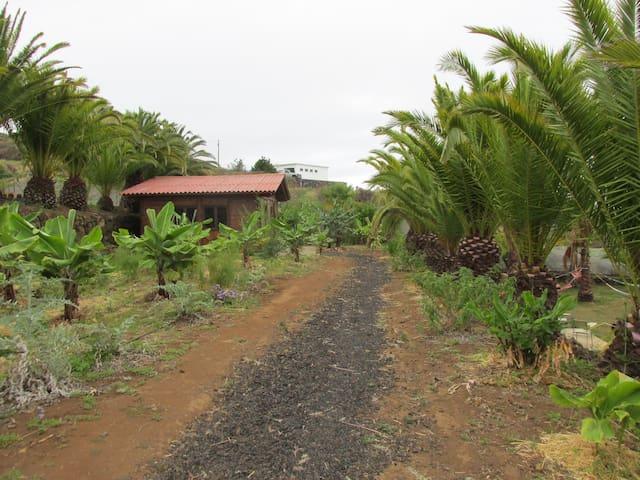 Pachamama - Villa de Mazo - Sommerhus/hytte
