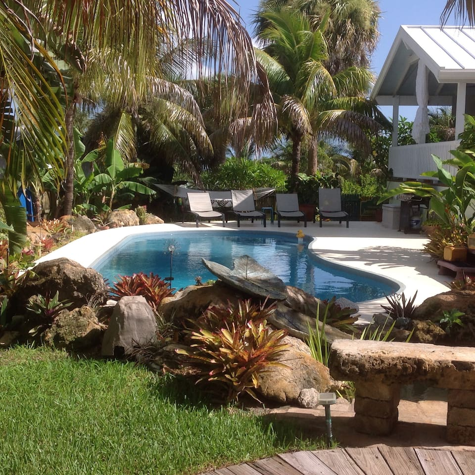 Poolside view from the tropical fish pond.
