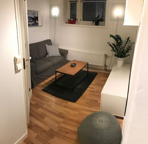 Cosy lower-ground apartment in Hamar