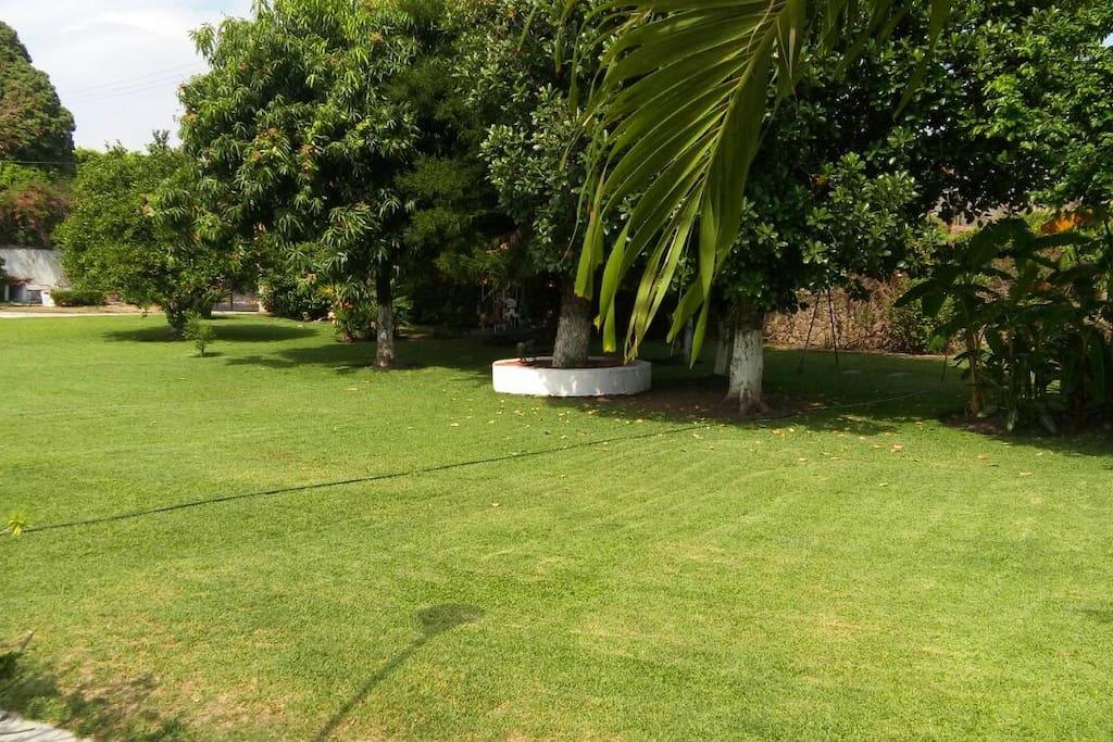 Amplio Jardin con columpios y carrusel.