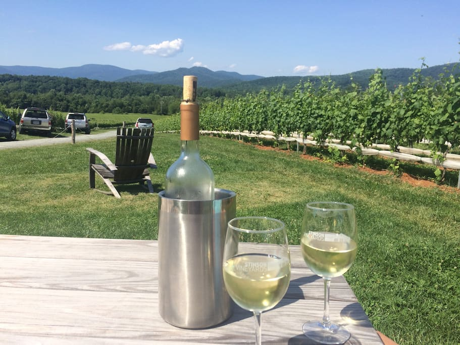 Enjoy wine at Stinson Winery!  Just several miles away