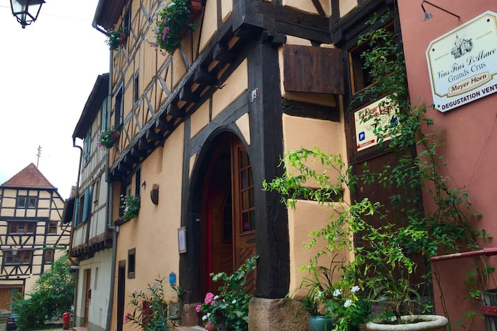 Vintage Apartment in Riquewihr with Terrace