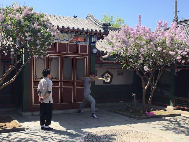 古色古香,风景宜人,优雅宁静的四合院 - Beijing - Villa