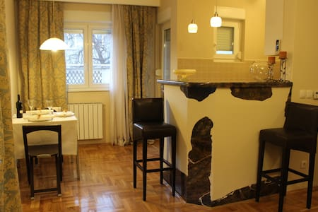 Comfortable apartment - Beograd - Wohnung
