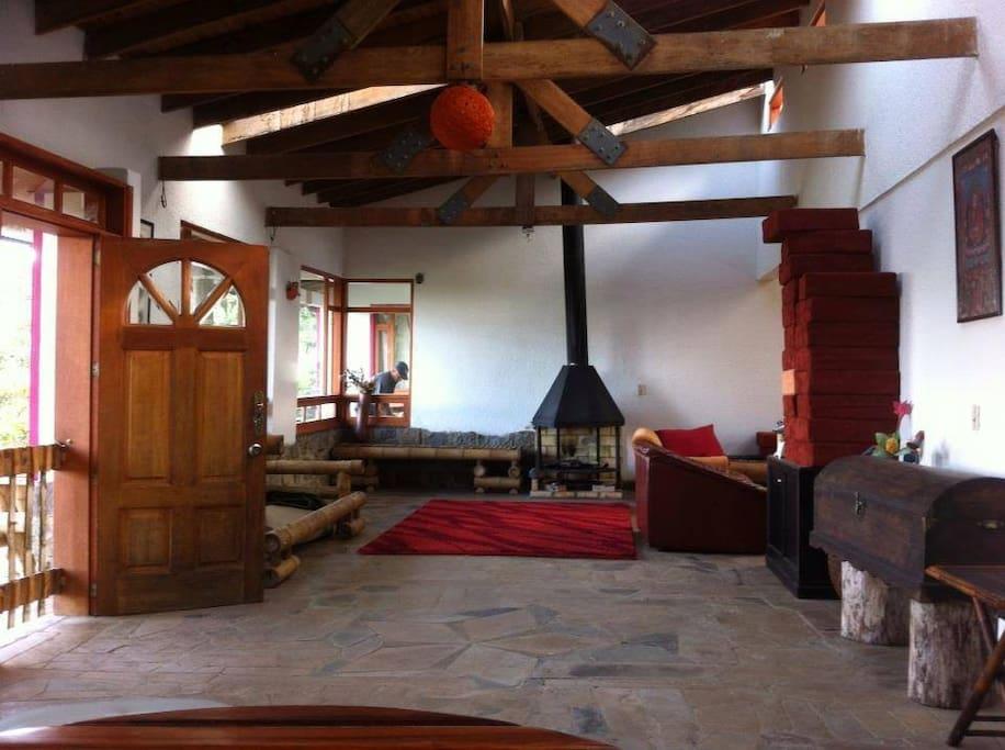 sala, con chimenea