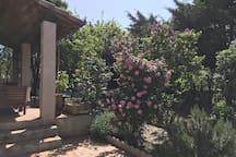 Le jardin calme et arboré