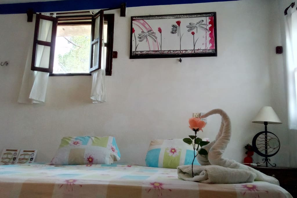 This is room 4, its a big room with lots of windows, its very cool from inside with hammock is furnished and with A/C.