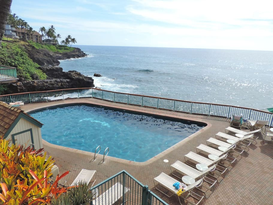 Our heated, oceanfront pool is The Place for Leisure and Relxation