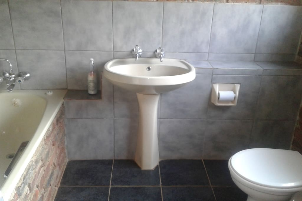 Shower, bath, toilet and basin
