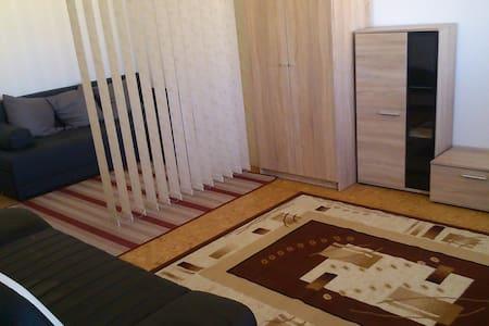 Apartment near Bratislava, Slovakia Ring, Gyor! - Dunajská Streda - Apartmen