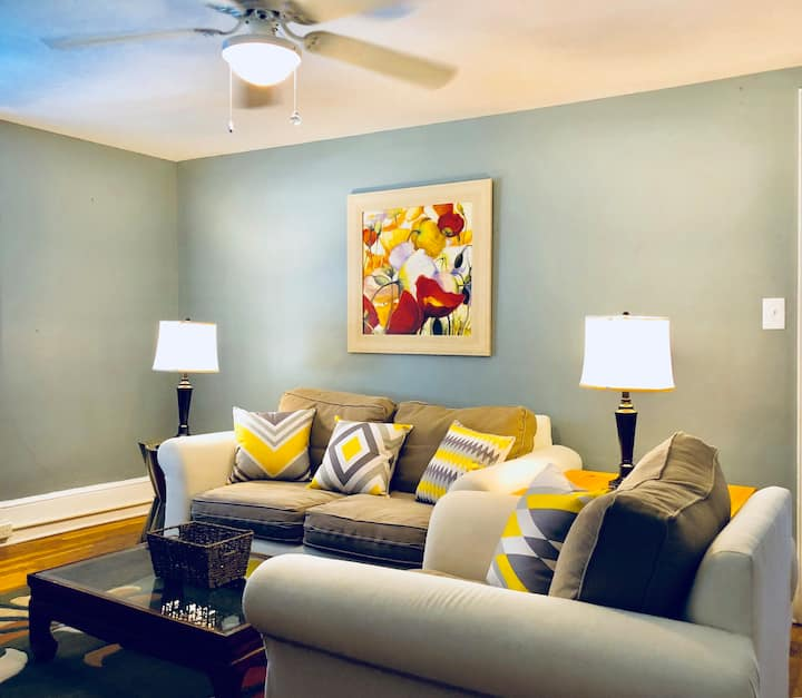 Gorgeous  1-b Apt near hospitals and D/Town