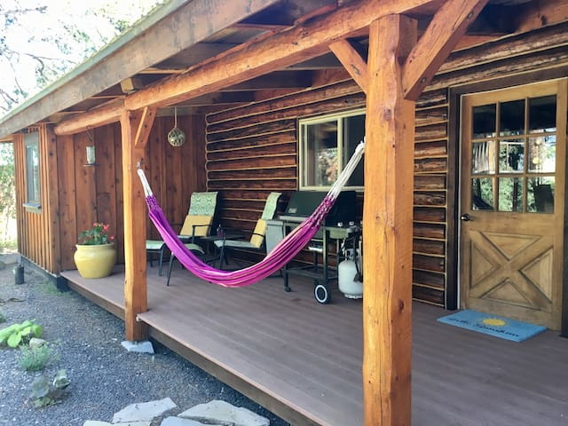 Back deck with hammock and BBQ.