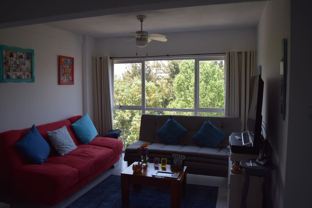 Beautifully decorated and renovated apartment on seventh floor with elevator access