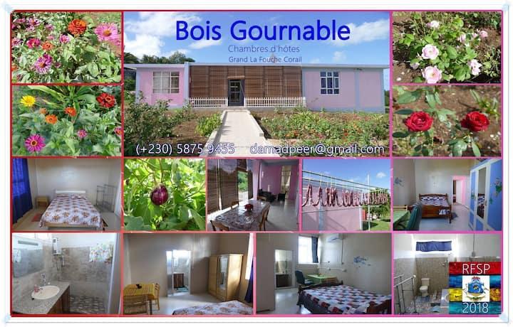 Bois Gournable
