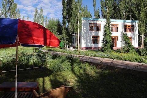 Organic farmstay (Ladakh countryside Experience)