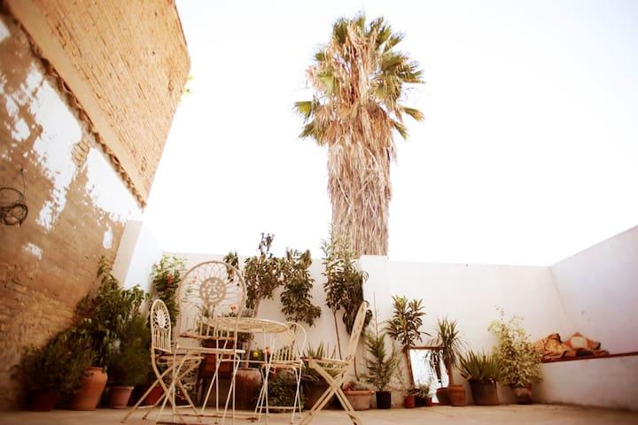 Loft with sunny seaside terrace - València - House