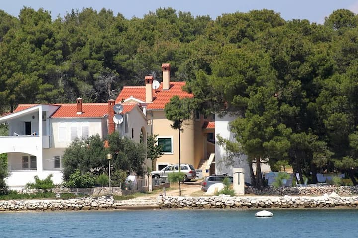 One bedroom apartment near beach Verunić, Dugi otok (A-8103-d) - Veli Rat - Apartemen