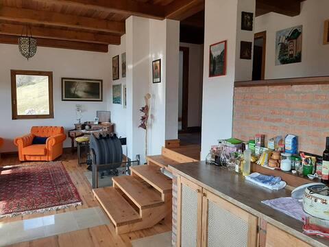 Zlatibor Oasis Apartments