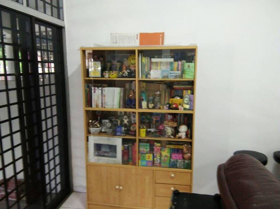 Bookshelf in the living room