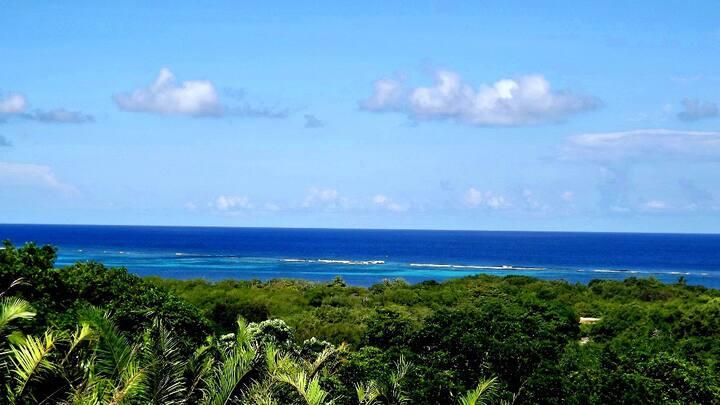 Ocean-Views, Huge Sparkling Pool, Private Beach