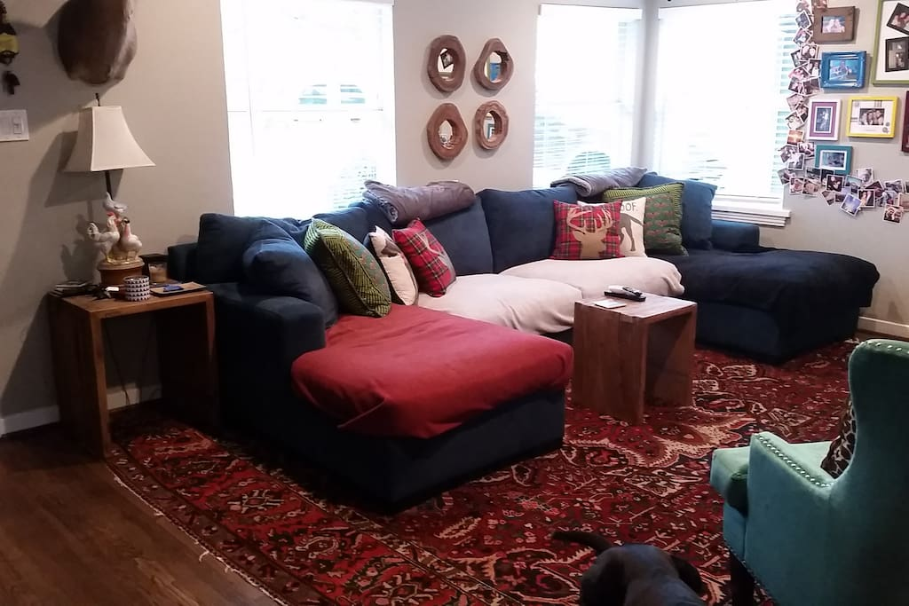 Living room with great light and roomy couch