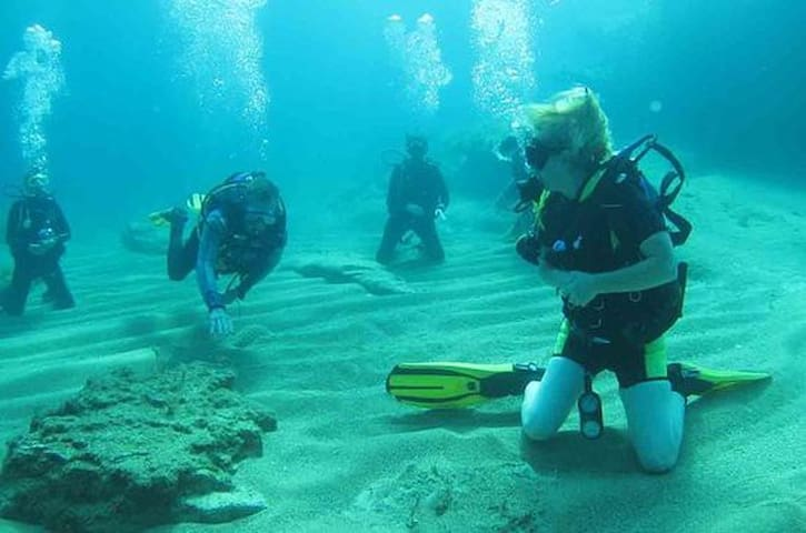 Diving and scuba diving experience can be booked in the square.