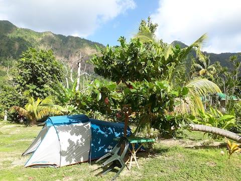 "Big Banana Campground ""SOUL"""