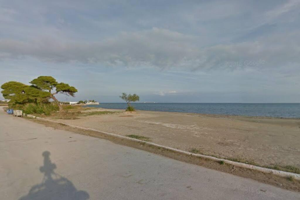 Παραλία αρτέμιδος
