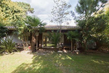Guest House Coeur du Bassin - Lanton - Natur lodge