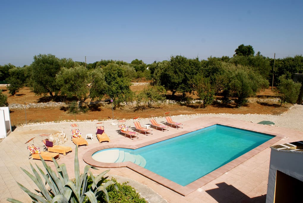 Large Private Pool with Roman Steps (10m x 5m) in Beautiful Italian countryside.