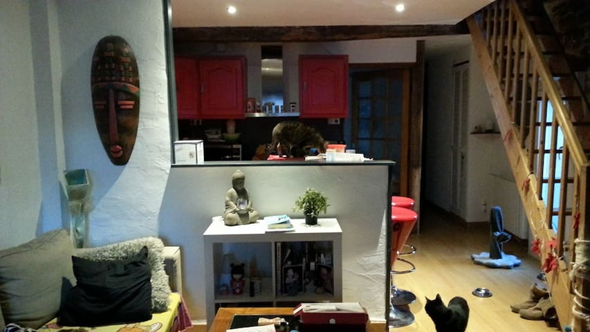 Duplex calme centre ville de DIJON - Dijon - Apartment