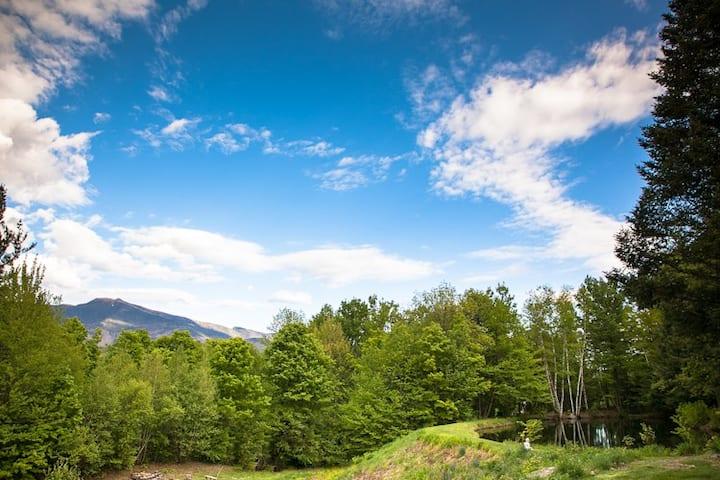 Exquisite Mountain Retreat