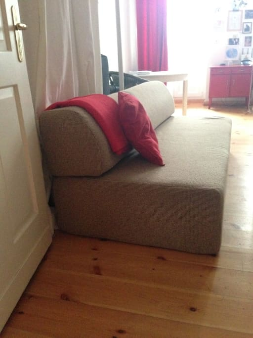 this is the couch  for max 2 small people to sleep on