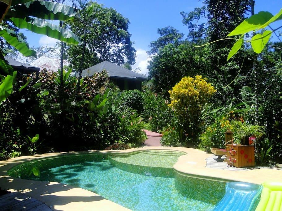 bungalow palmera bed breakfasts for rent in ojochal. Black Bedroom Furniture Sets. Home Design Ideas